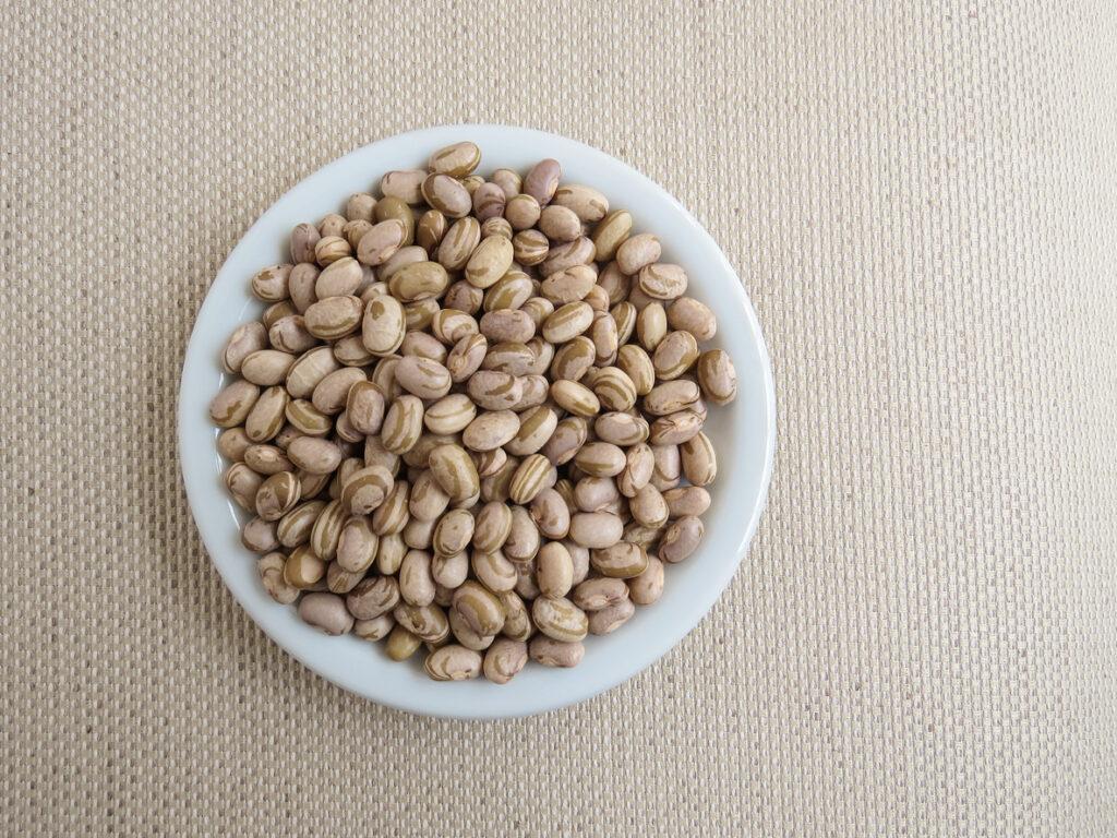 Qualidade das sementes para plantação de feijão