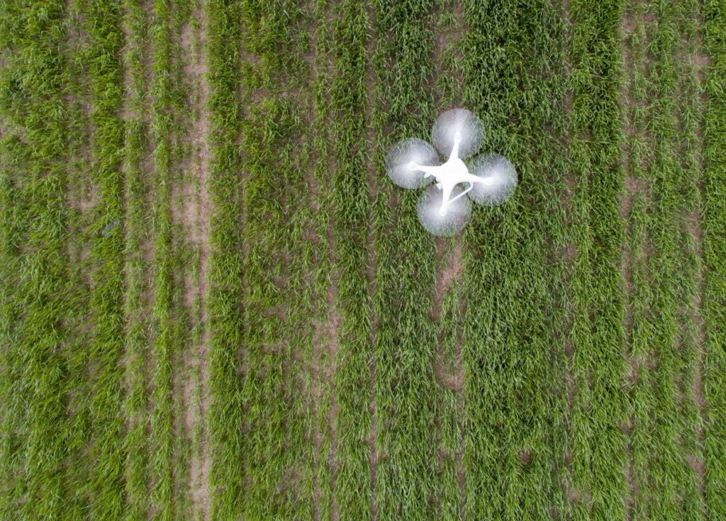 Mapeamento de falhas na plantação com drones na agricultura